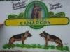 Banner de Publicidade do Canil